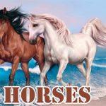 Horses Slide