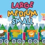Large Medium Small